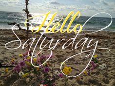Happy Saturday coastal lovers ~ Hello Saturday, Happy Saturday, Sunday, Saturday Quotes, Sea Shells, Life Is Good, Coastal, Neon Signs, Seas