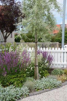 Garden Border Plants, Garden Borders, Landscape Design Plans, Garden Cottage, Backyard Cottage, Front Yard Landscaping, Landscaping Ideas, Mulch Landscaping, Balcony Garden