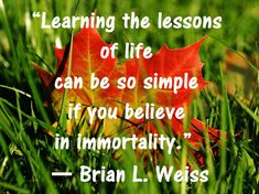 Collection of best Brian Weiss quotes ever. Inspirational Quotes from his Best Seller Book on Past Life regression Many Lives Many Masters Dr Brian Weiss, Only Love Is Real, Leaving A Relationship, Past Life Regression, Who Book, Spiritual Messages, Good Doctor, How To Stay Motivated, Spiritual Awakening