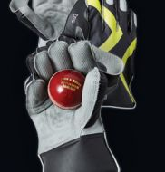 GM 303 Wicket Keeping Gloves Mens #cricket #cricketgloves #keepinggloves #gloves