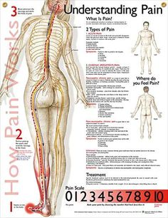 Understanding Pain  Repinned by SOS Inc. Resources. Follow all our boards at pinterest.com/sostherapy for therapy resources.