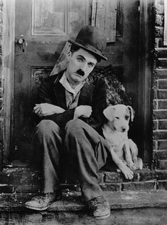 Money and Chaplin: a dog's life. Read article on yareah.com