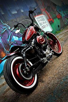 biker excalibur II: JAIMES CHEETHA PRINT SPOTSTER 1200 by Houston retro bobbers