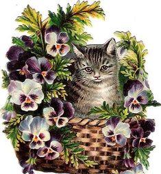 Glanzbilder - Victorian Die Cut - Victorian Scrap - Tube Victorienne - Glansbilleder - Plaatjes : Katze II