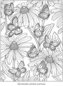 Desenhos para colorir adultos-2