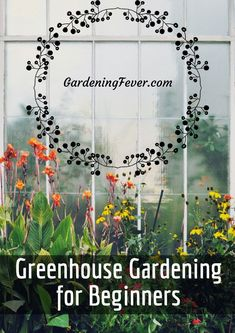 Get inspired ideas for your greenhouse. Build a cold-frame greenhouse. A cold-frame greenhouse is small but effective. Diy Small Greenhouse, Backyard Greenhouse, Greenhouse Wedding, Greenhouse Plans, Homemade Greenhouse, Cheap Greenhouse, Indoor Vegetable Gardening, Home Vegetable Garden, Organic Gardening