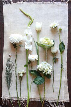 White Wedding Fowers - genesta, chinamum, spray rose, gladiolus, tulip, hydrangea, kale, rose, dahlia. Not pictured - garden rose, tuberose, gerbera, paperwhite.
