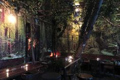 ღღ A glimpse of the jungle in a cool Berlin bar