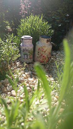 kreatiwik / Kvetinovo bylinkové konvičky