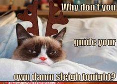 Tarder the Grumpy Reindeer