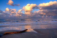 Spiaggia libera accanto alla Pineta