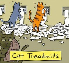 Cat Treadmills #cartoon