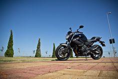 Uma moto por dia: Dia 185 – Yamaha XJ6 ABS | Osvaldo Furiatto Fotografia e Design