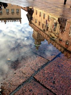 Riflessi nell'acqua, Bologna, Emilia Romagna, Italy