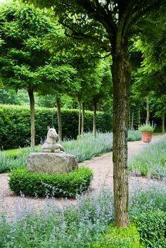 Great web site of garden photographer    This; Cothay Manor, Wellington, Somerset photographs