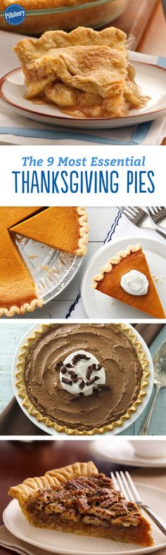 The 9 Most Essential Thanksgiving Pies: These pies should all be on your dessert table. #pie #recipes #thanksgiving #dessert