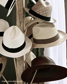 Every man should own at least one proper Fedora. Sharp Dressed Man, Well Dressed Men, Stylish Hats, Costume, Gentleman Style, Men Looks, Hats For Men, Types Of Fashion Styles, Men Dress