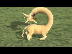 Baaa- Bizarre little video about self-replicating sheep. One of many bizarre little videos by Cyriak.