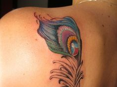 25 Extravagant Peacock Feather Tattoo For 2013