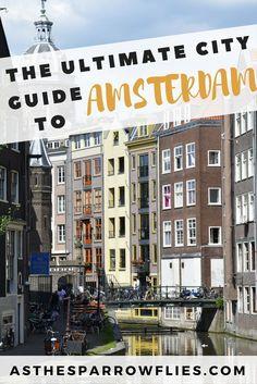 A Weekend in Amsterdam   Amsterdam City Break Guide   European Travel   The Netherlands Breaks #visitamsterdam #amsterdam #traveltips