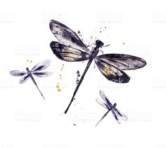 Find purple dragonfly stock images in HD and millions of other royalty-free stock photos, illustrations and vectors in the Shutterstock collection. Dragonfly Tatoos, Dragonfly Quotes, Dragonfly Drawing, Dragonfly Tattoo Design, Dragonfly Art, Key Tattoos, 1 Tattoo, Mini Tattoos, Small Tattoos