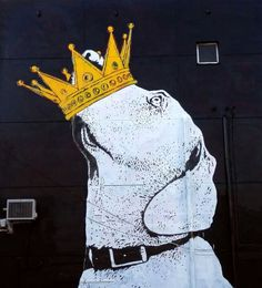 Crown graffiti dog street artist Dolk