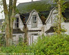 Abandoned House/. There's something about this house that I find compelling. No info on it.