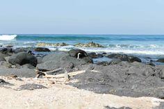 Playa Troncones cerca de Zihuatanejo, Gro