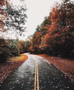 Smoky Mt park. Instagram: @johnsongiles