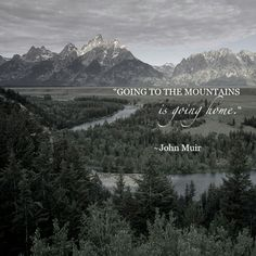 & to the mountains is going home.& ~ John Muir The post & to the mountains is going home.& ~ John Muir appeared first on Pink Unicorn. Hiking Quotes, Travel Quotes, Quotes About Hiking, Wilderness Quotes, John Muir Wilderness, Wilderness Tattoo, Wilderness Explorer, Wilderness Survival, Great Quotes