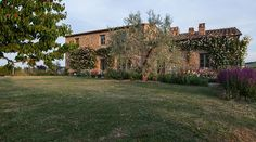 Stunning luxury property for sale near Montepulciano, with a beautiful 'designer rustic' interior, 8 bedrooms, pool, annex and ha Siena, Italian Farmhouse, Luxury Property For Sale, Small Luxury Hotels, Farmhouse Remodel, Luxury Holidays, Rustic Elegance, Maine House, Rustic Interiors