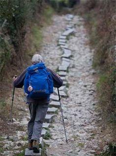 Galicia Camino de Santiago