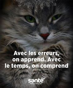 With the errors, we learn. With the time we understand. Positive Life, Positive Attitude, Motivational Quotes, Inspirational Quotes, French Quotes, True Feelings, Learn French, Some Words, Thing 1