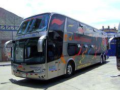 Bus de la empresa GM que venía de Lima a Aucayacu se despistó en la carretera central a la altura de Ambo