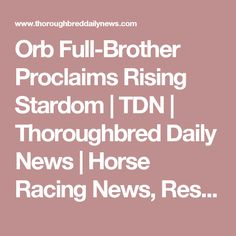 Orb Full-Brother Proclaims Rising Stardom   TDN   Thoroughbred Daily News   Horse Racing News, Results and Video   Thoroughbred Breeding and Auctions