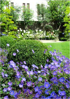 Paul Doyle Garden Designer - Palmerston Garden