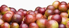 Camu camu, a berry grown in South America, is a trendy new superfood touted for its vitamins and minerals. Find out what a nutritionist says about camu camu and how to use it in meals. Apple Cider Vinegar Health, Forest Fruits, Cbd Hemp Oil, Dog Snacks, Vitamins And Minerals, Health Benefits, Health And Wellness, Berries, 5 Pounds