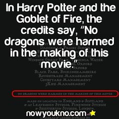 Do does this mean there really are dragons, and they had to put this in the fine print for legal reasons?---------omg