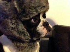 Je me protège il fait trop froid dehors... ...