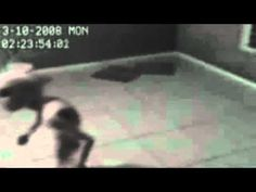 Alien Grey Captured in Brazil Amazing Video Evidence Of Aliens, Aliens And Ufos, Ancient Aliens, Human Giant, Alien Sightings, Grey Alien, Paranormal Photos, Unidentified Flying Object, Scary Dolls