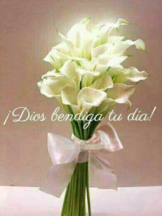 Morning Greetings Quotes, Morning Messages, Spanish Greetings, Good Day Quotes, Always Remember You, Dear God, Happy Day, Beautiful Birds, My Best Friend