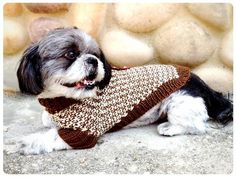 Looking for your next project? You're going to love Twin Tweed Dog Sweaters by designer ShiriDesigns. - via @Craftsy
