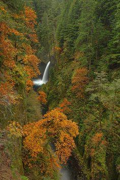 Fall Colors at Metlako Falls on Eagle Creek, Columbia River Gorge National Scenic Area, Oregon