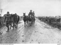 Unidentified soldiers and Australian Artillery pack horses, loaded with ammunition for field guns, passing along the muddy Mametz-Montauban road. France: Picardie, Somme, Albert Combles Area, December 1916
