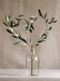 Image result for olive