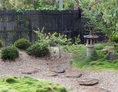 No Mow Grass Seed - less water, mow once a month, can plant over existing lawn.