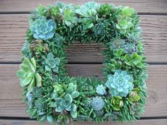 Beautiful Square Living Wreath Or Centerpiece by SucculentsGalore, $68.95