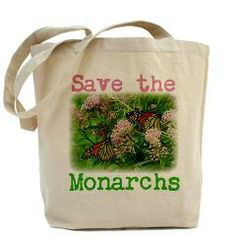 Plant milkweed! Save the Monarchs!