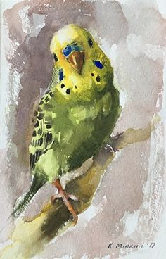 Daily Paintworks - - Original Fine Art for Sale - © Katya Minkina Watercolor Bird, Watercolor Animals, Watercolor Paintings, Bird Drawings, Animal Drawings, Afrique Art, Cute Birds, Animal Paintings, Bird Art