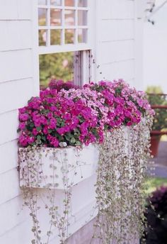 30 Bright and Beautiful Window Box Planters Brighten even the dim areas of your yard with shade-loving plants. Details: www.midwestliving The post 30 Bright and Beautiful Window Box Planters appeared first on Flowers Decor. Window Box Flowers, Balcony Flower Box, Front Yard Flowers, Window Planter Boxes, Planter Ideas, Plants For Window Boxes, White Planter Boxes, Hanging Window Boxes, Indoor Window Boxes